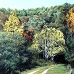 "Autumn in the Blue Ridge - 16.5"" x 17.5"" - Pastel - DeWitt Whistler Jayne"