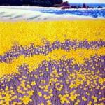 """""""April, Steward's Cove"""" - 11"""" x 8"""" - Reduction Woodcut Print - Gordon Mortensen"""