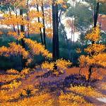 """Sherborn Woods""- 22"" x 30"" - Reduction Woodcut Print - Gordon Mortensen"