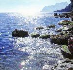 "Everlasting Gaze - 39"" x 39"" - Oil on Canvas - Marc Esteve"
