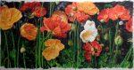 Icelandic Poppies - Watercolor - Charlotte Bixby Yep
