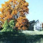 "The Old Homestead - Pastel - 20"" x 16"" - DeWitt Whistler Jayne"