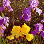 """Bearded Iris""- 29"" x 40"" - Reduction Woodcut Print- Gordon Mortensen"