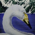 """Will Bullas   """"Queens for the Swans""""   14 x 14"""