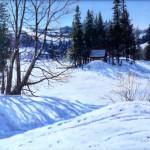 "SILVER LAKE #1 - 9"" X 12"" - Oil on Canvas - Barbara Conley"
