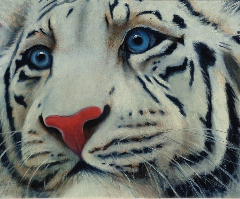 """White Tiger - 24"""" x 36"""" - Watercolor - Will Bullas"""