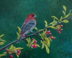 "Emeral Forest House Finch Male | 8"" x 10"" 