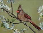 "Her White Lace Northern Cardinal Female | 6"" x 8"" 