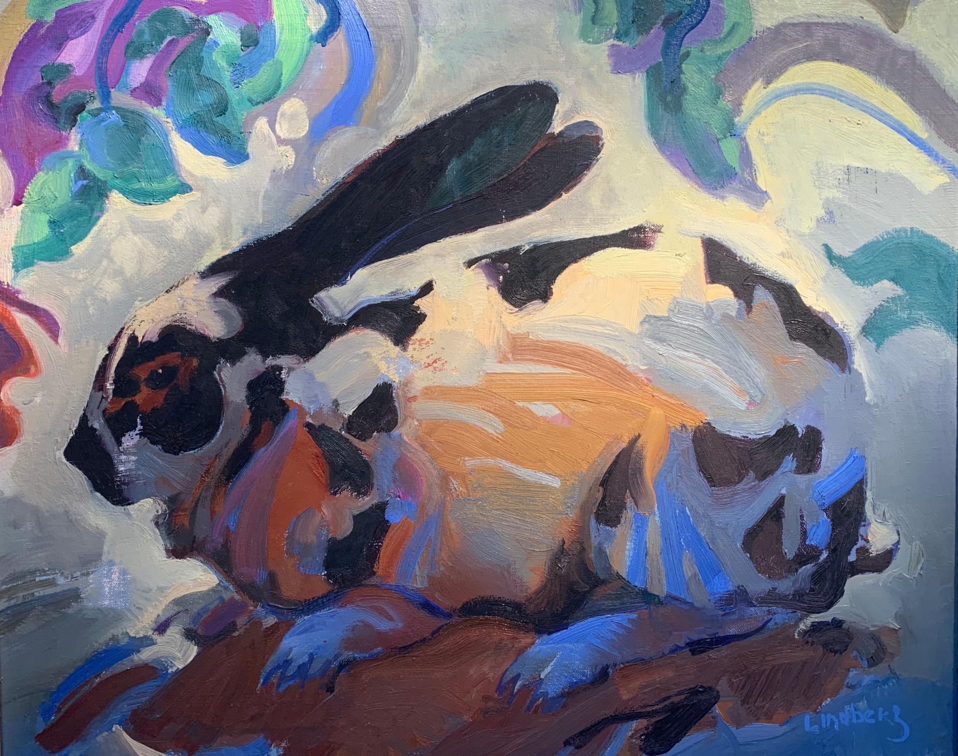 "Bluefoot | 20"" x 24"" | Keith Lindberg"