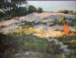 "Dappled Dune | 11"" x 14"" 