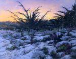 "Dusk Sandscape | 16"" x 20"" | Terri Ford"