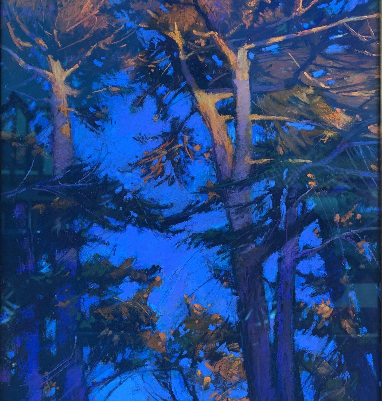 "Sunset Cypress | 16"" x 12"" | Terri Ford"
