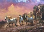 Freedom | 30″ x 40″ | Robert Hagan