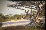 Carmel Beach 2   8″ x 12″   Stratton