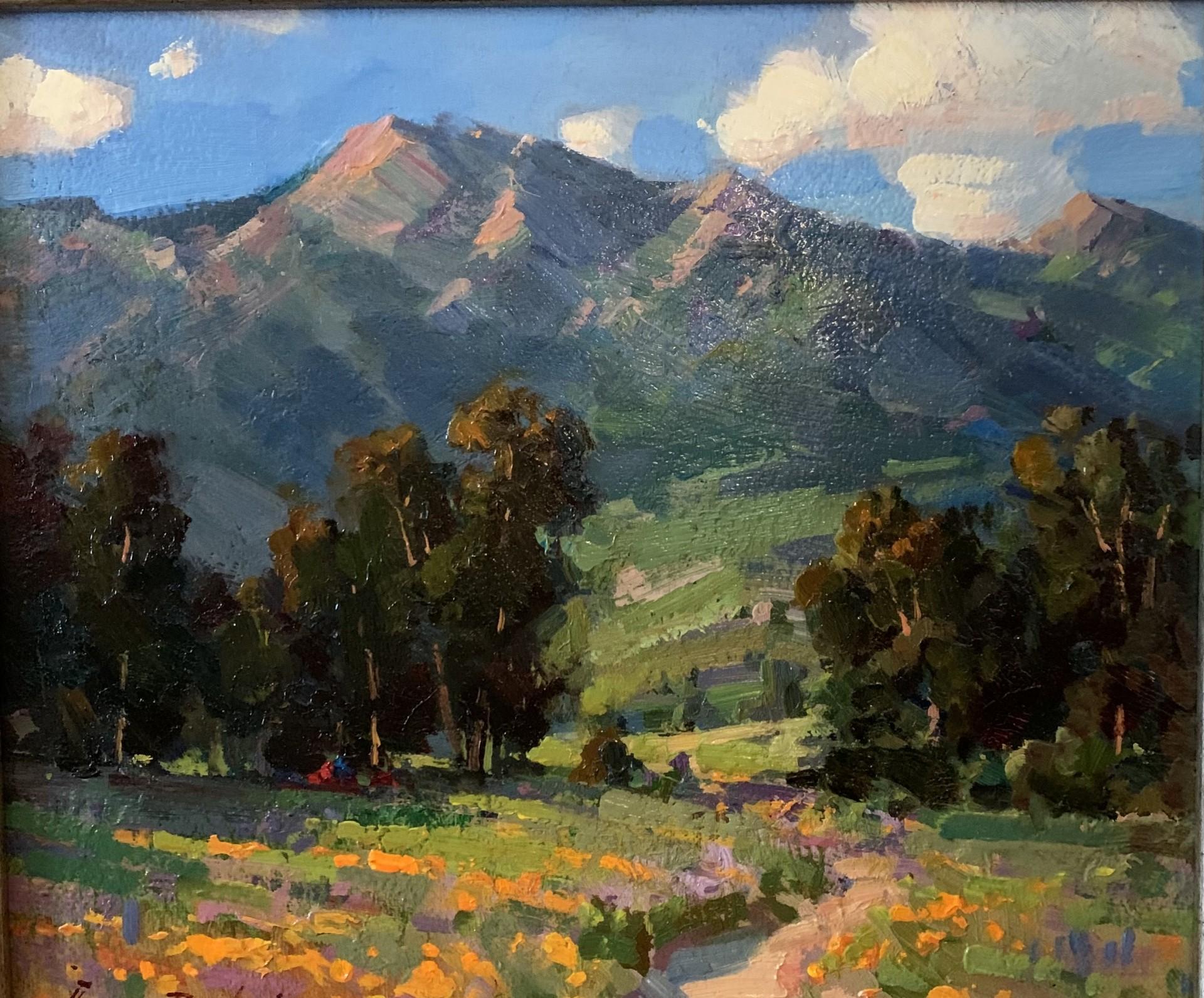 California Hills | 13″ x 15″ | Ovanes Berberian