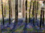 Wild Hyacinths   18″ x 24″   Ann Cavanaugh