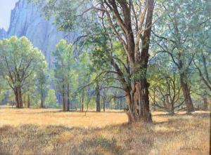 "Yosemite | 12"" x 16"" | Barbara Conley"