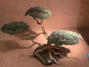 Garcia | Cypress #12 | Bronze Jade