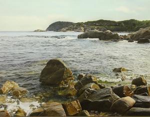 "The Land  the Sea | 21""x28"" | Iban Navarro"