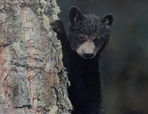 "Bear Cub in a Tree | 14"" x 18"" 