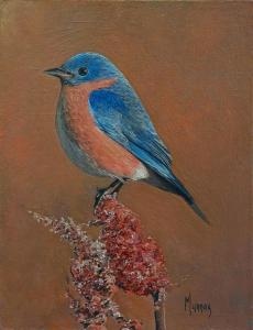 "Eastern Blue Bird Male | 8"" x 6"" 