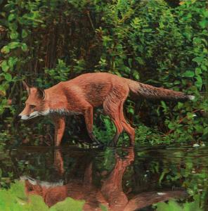 "Fox on a Mission | 12"" x 12"" 