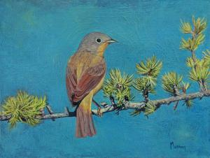 "My Thoughts Nashville Warbler | 6"" x 8"" 