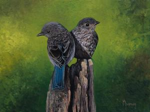 "You Say This and I Say That Mountain Bluebirds | 6"" x 8"" 